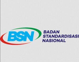 CPNS BSN 2021