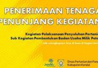Lowongan Kerja Dinas Pertanian dan Pangan DPP Kendal