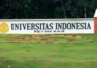 Lowongan Kerja UI Universitas Indonesia